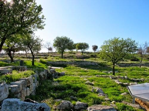 Ancient Elina – Dymokastro
